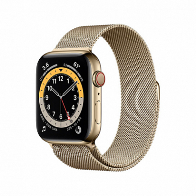 Смарт-часы Apple Watch Series 6 + LTE 40mm Gold Stainless Steel Case with Gold Milanes Loop